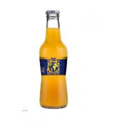 Radical Naranja Botella vidrio 25 cl 24 u
