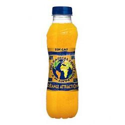 Radical Naranja  botella plastico 50 cl 12 u